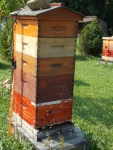 This is a Warre hive. See this website for more information